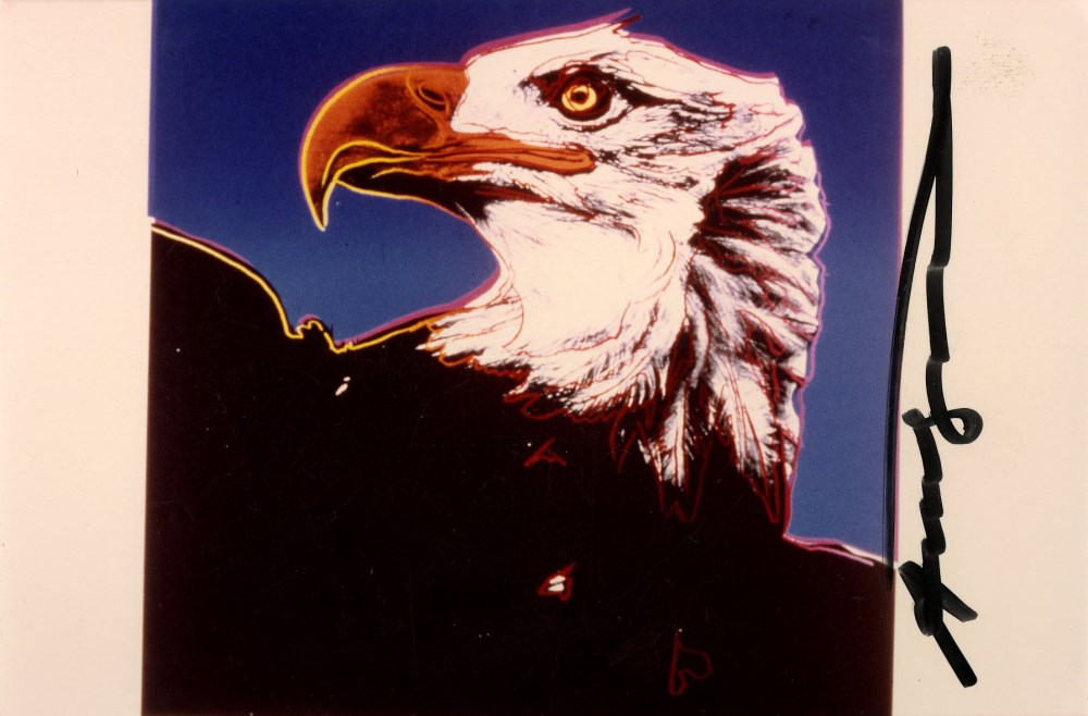 ANDY WARHOL - Bald Eagle - Original color analogue photograph