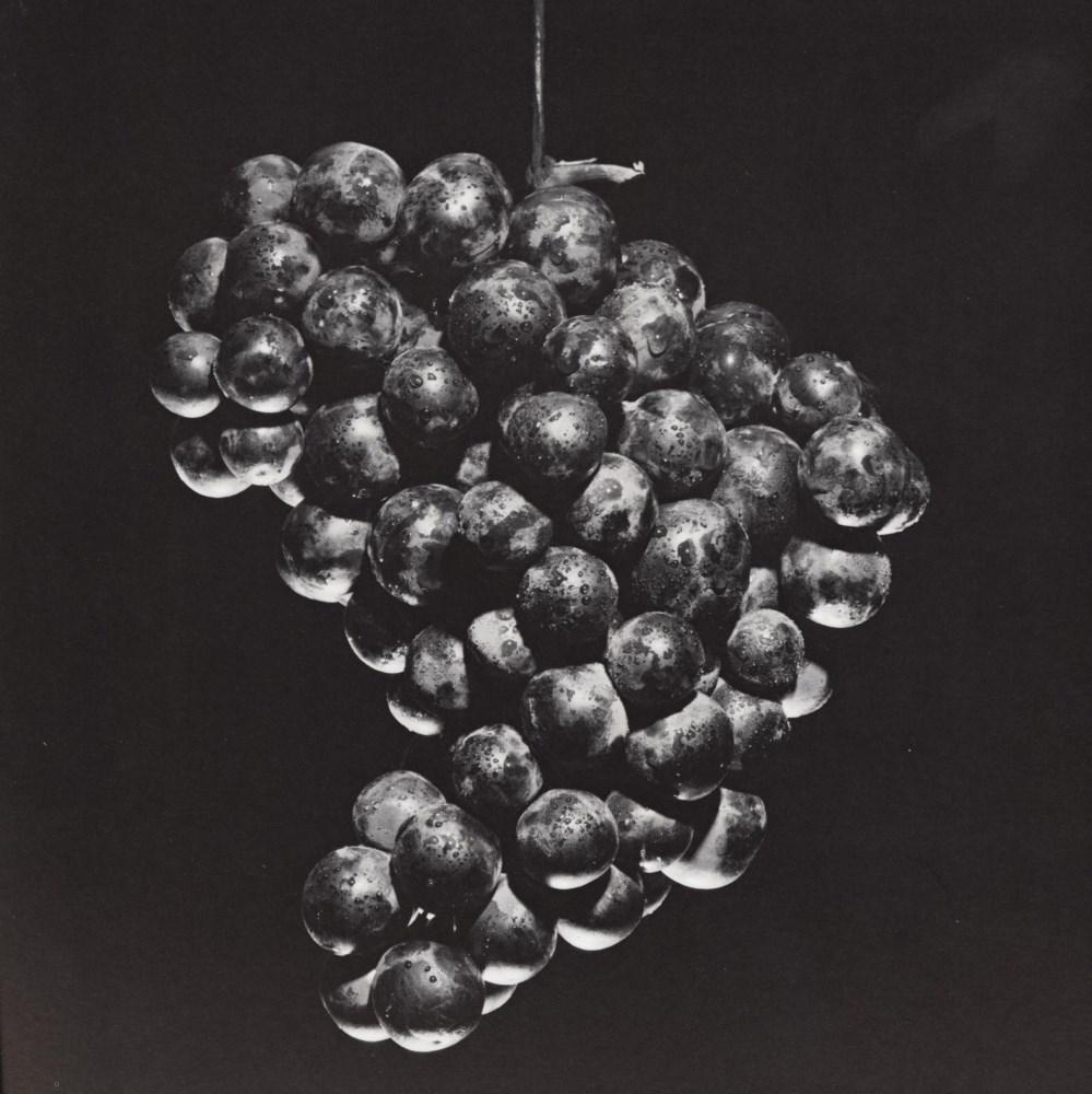 ROBERT MAPPLETHORPE - Grapes - Original vintage photogravure
