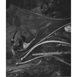 EDWARD WESTON - Tide Pool, Point Lobos - Original photogravure