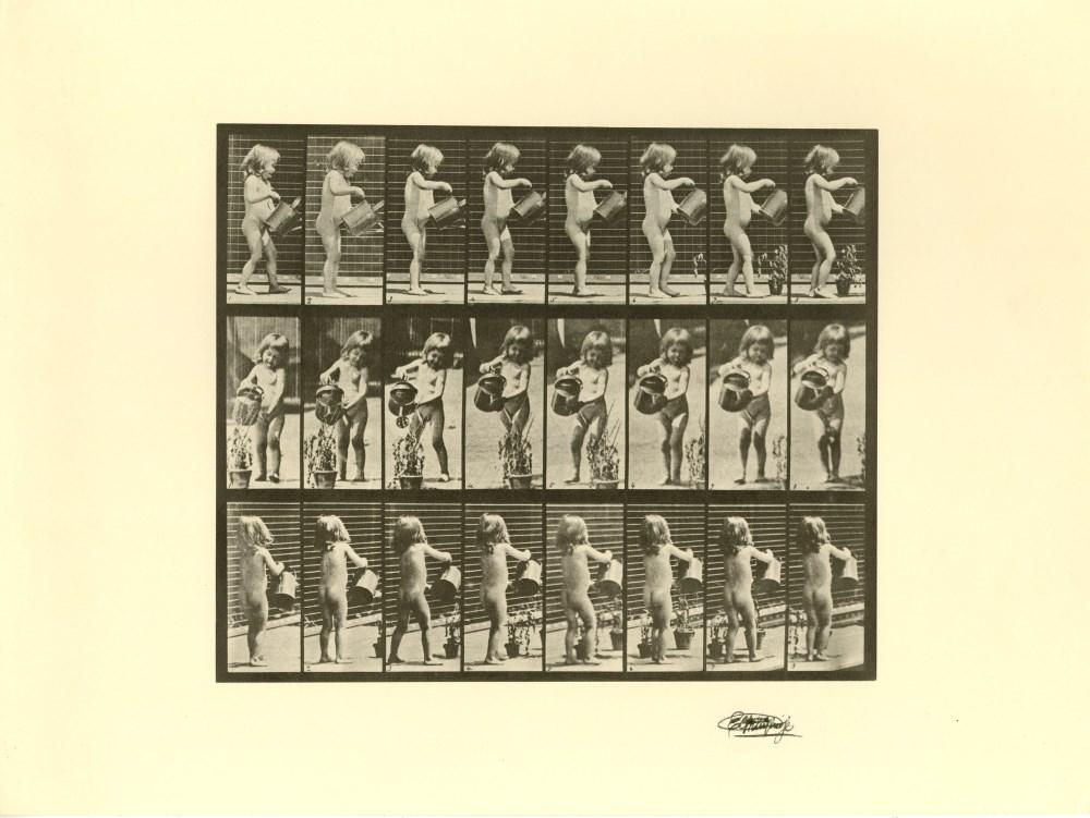 EADWEARD MUYBRIDGE [d'apres] - Girl Watering - Original photogravure
