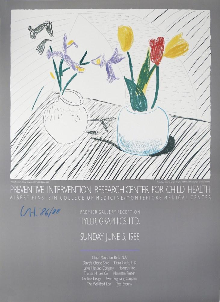 DAVID HOCKNEY - White Porcelain - Color offset lithograph