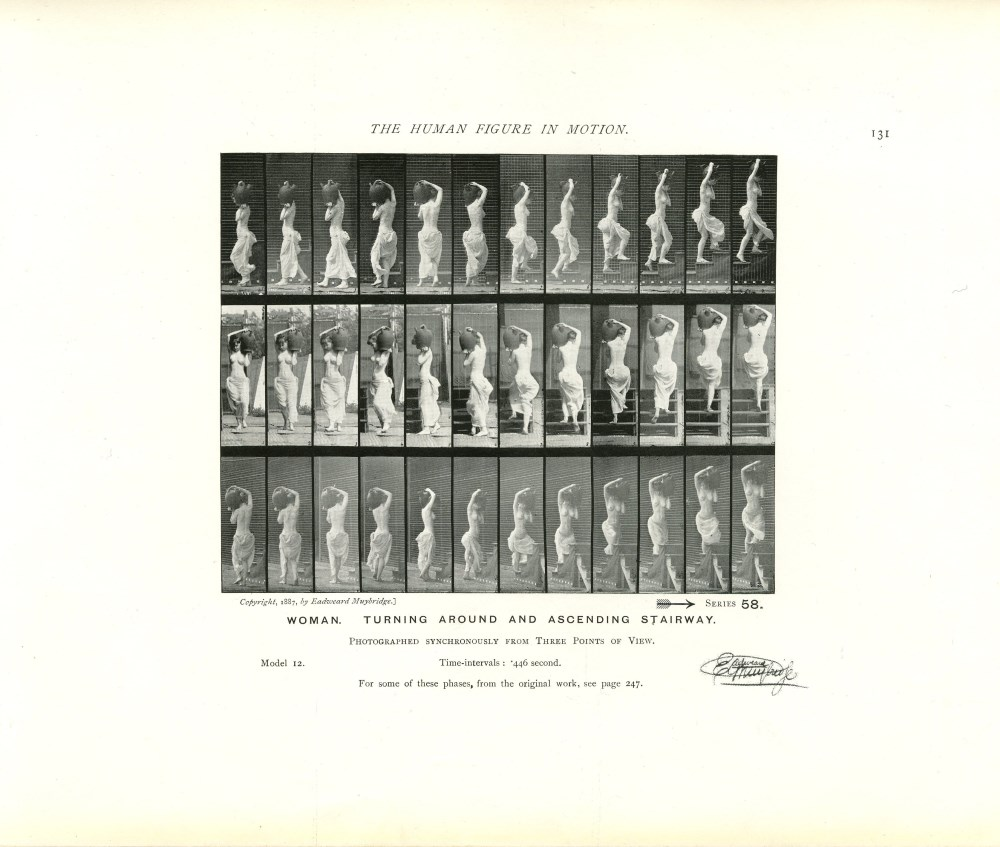 EADWEARD MUYBRIDGE - Woman: Turning around and Ascending Stairway - Original photomezzotint & let...