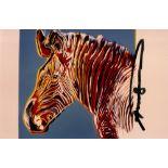 ANDY WARHOL - Grevy's Zebra - Original color analogue photograph