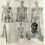 GEORGE PLATT LYNES - Skeletons with Penis - Original vintage photogravure