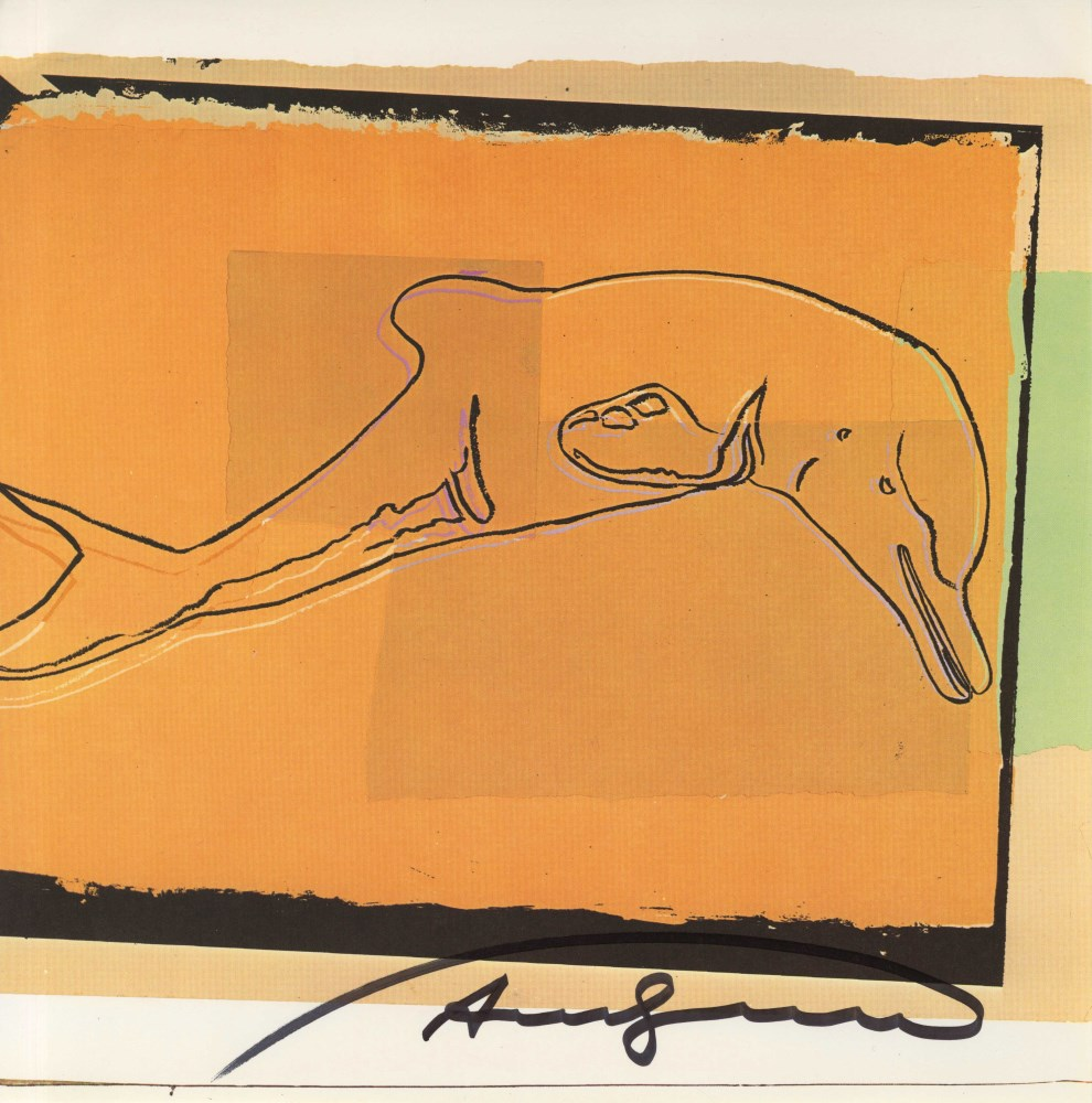 ANDY WARHOL - La Plata River Dolphin - Color offset lithograph