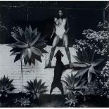 HELMUT NEWTON - Raquel Welch in Her Backyard, Beverly Hlls - Original vintage photolithograph