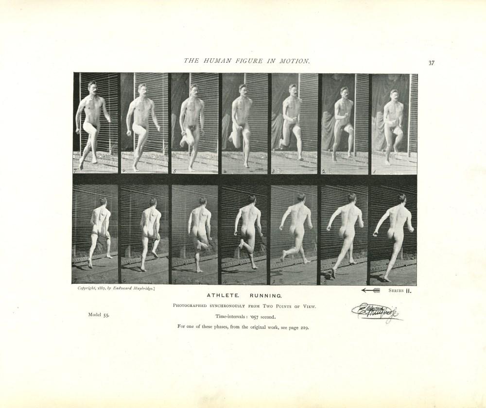 EADWEARD MUYBRIDGE - Athlete: Running - Original photomezzotint & letterpress