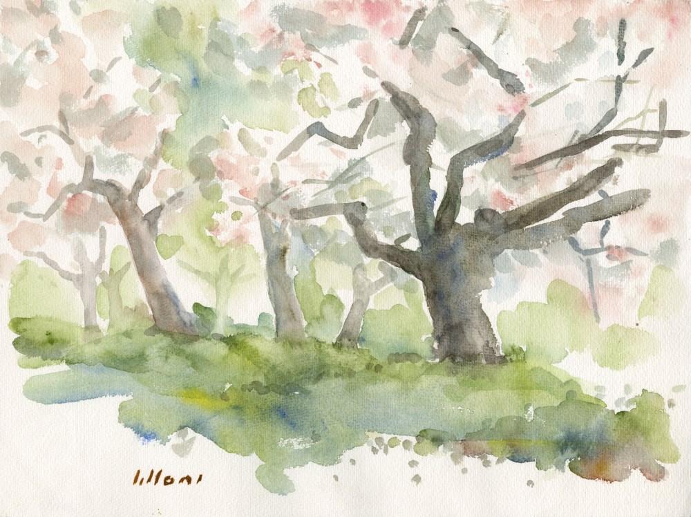 UMBERTO LILLONI [d'apres] - Bosco - Original watercolor on paper