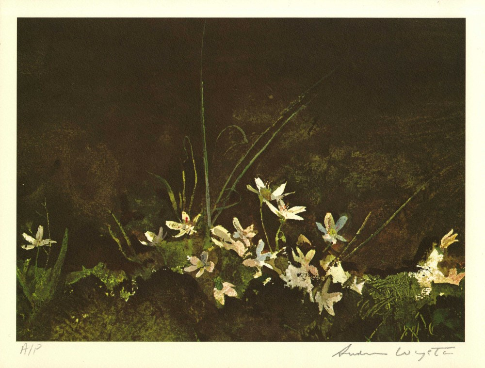 ANDREW WYETH - May Day - Color offset lithograph