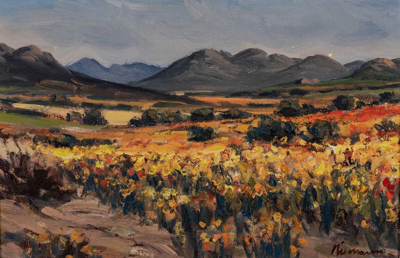 Hendrik (Hennie) Christian Niemann (South Africa 1941 ? ): NAMAQUALAND