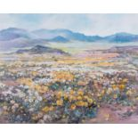 Patricia Vaughan (South Africa 1922 ? ): COSMOS FIELD