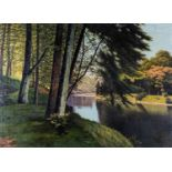 Fritz Chwala (Austria1872 ? 1936): REFLECTIONS IN A FOREST