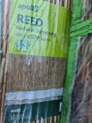 (J22) PALLET TO CONTAIN 24 x APOLO REED NATURAL SCREENING. 4 x 2M - PLASTIC COATED