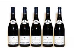 Crozes Hermitage, Domaine de Thalabert, Paul Jaboulet Aine, 2009, five bottles