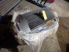 Shredding/Granulating Line spare parts: spare motor for pre-shredder, WEG, 200 hp