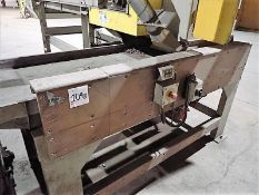 """Shaker conveyor, approx. 30"""" x 8', 2 x 1 hp (Subject to confirmation. The winner will be"""