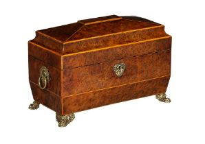 A George IV thuya wood tea caddy