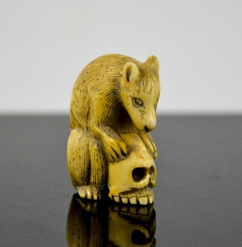 A Chinese ivory carved netsuke in the form of a wolf cub and skull, signed to the base, 4cm high.