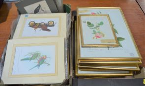 A large quantity of framed and unframed prints of flowers, birds etc