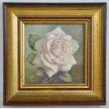 Clare Fadelle (20th century): Rose Memoriam, oil on board, 10 by 10cm.