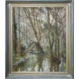 A Nikolsky (20th century): forest landscape, oil on canvas, 50 by 60cm.