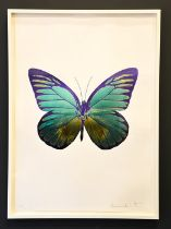 Damien Hirst, foil block print on white, limited edition 2/15, butterfly, signed by the artist in