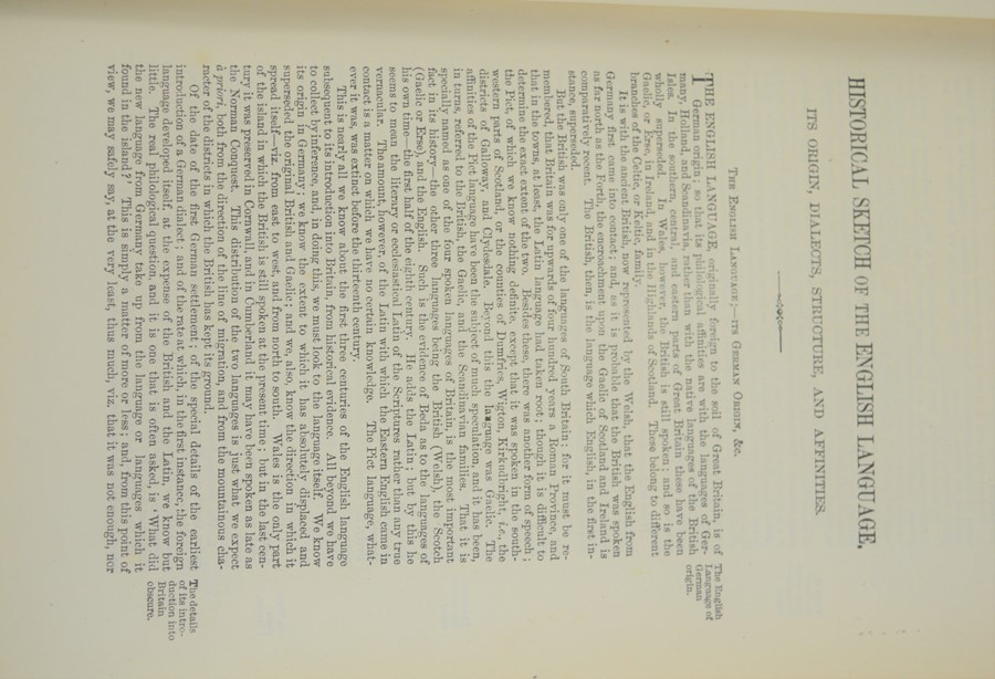Dr Samuel Johnson dictionary 1876. - Image 3 of 3