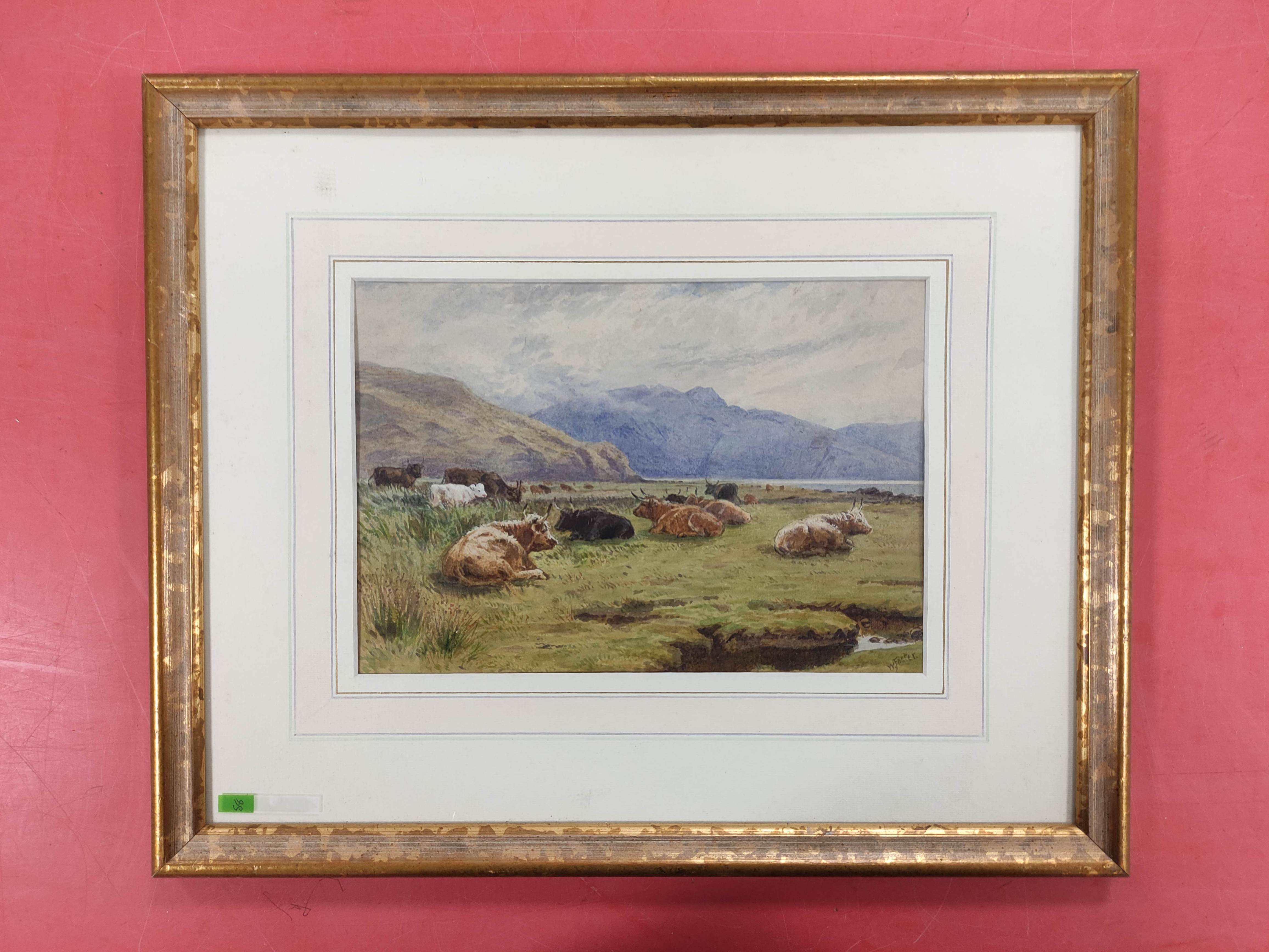 WILLIAM FOSTER. Highland Cattle, Balmacara. Signed, watercolour. 18cm x 26cm.
