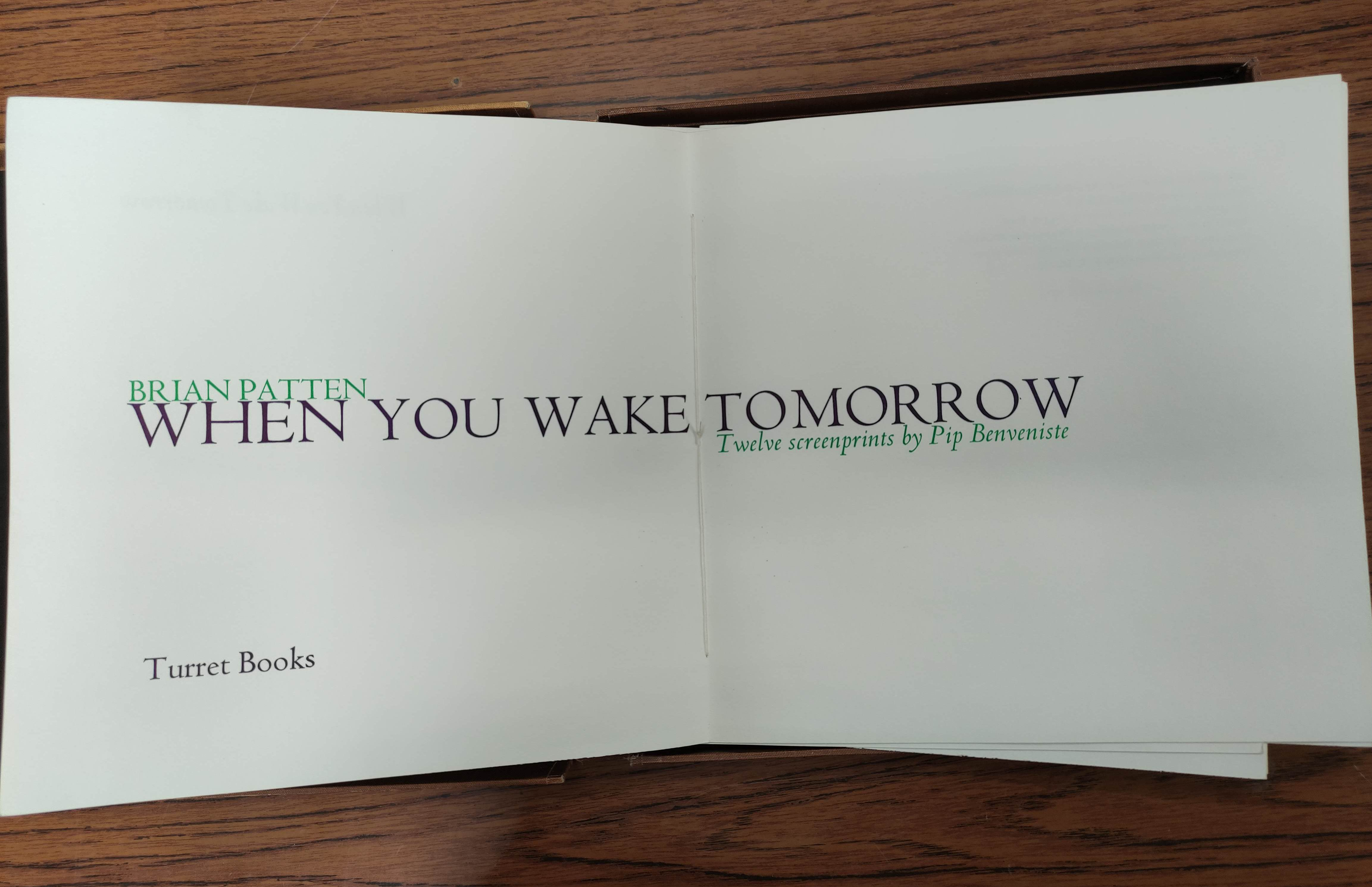 BENVENISTE PIP (Illus).When You Wake Tomorrow by Brian Patten. Ltd. ed. 21/125. Signed by author & - Image 4 of 14