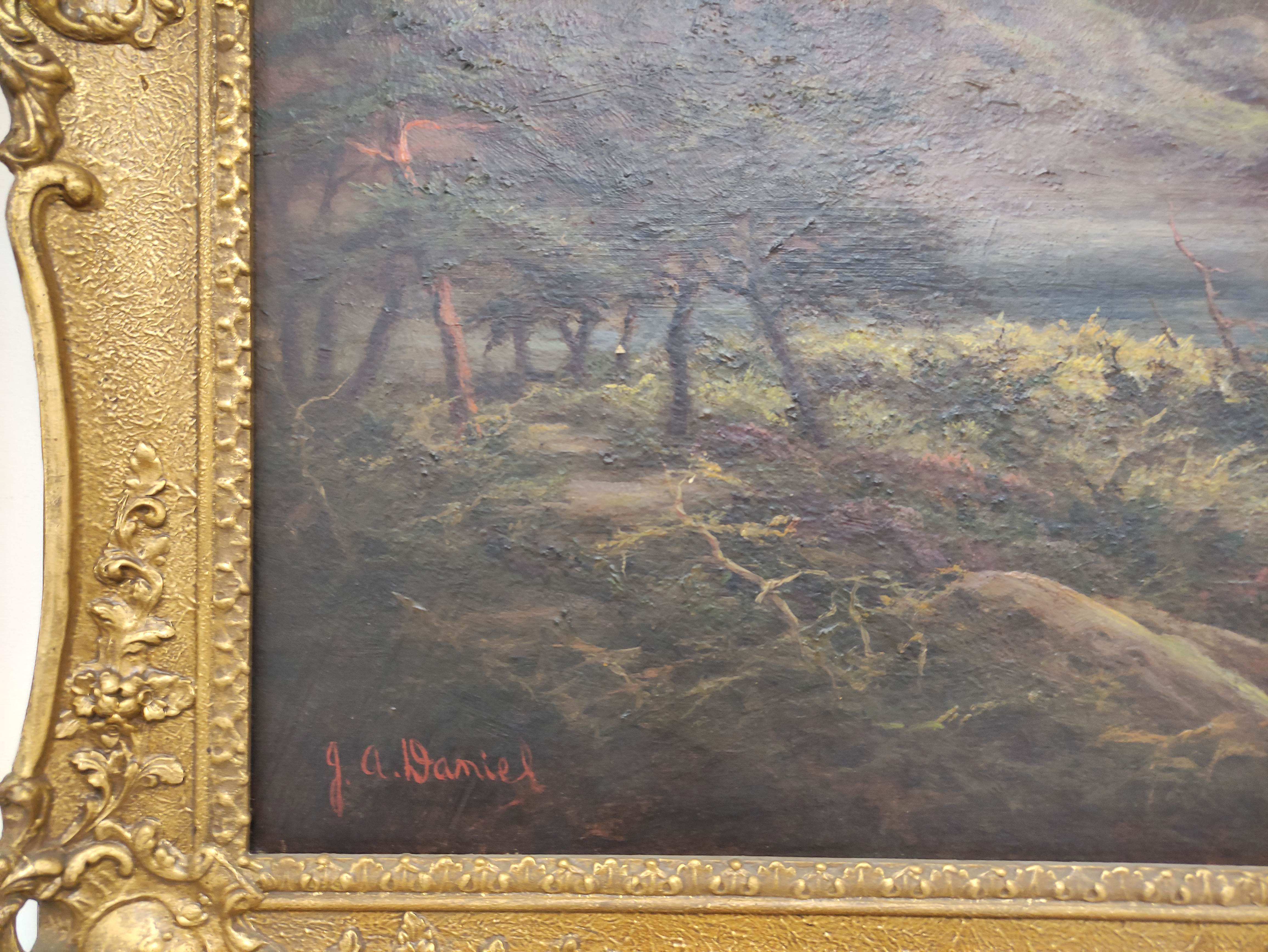 J. A. DANIEL. Loch Aylort. Signed, oil on canvas. 60cm x 90cm. - Image 2 of 3