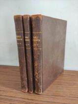 IRELAND & DUMFRIESSHIRE.Family Chronicle.Vols. 2, 3 & 4 of a detailed family chronicle. Vol. 2 (