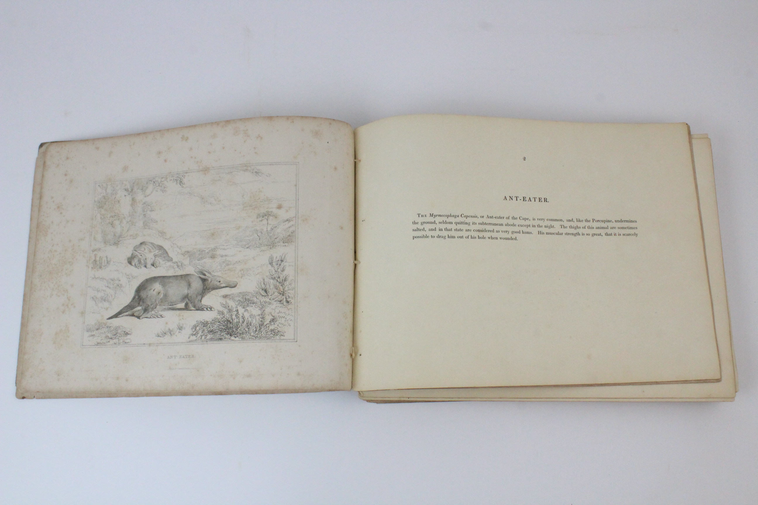 After Thomas Shotter Boys (1803-1874), Eight views of French cities, comprising: 'The Porch Of - Image 21 of 30