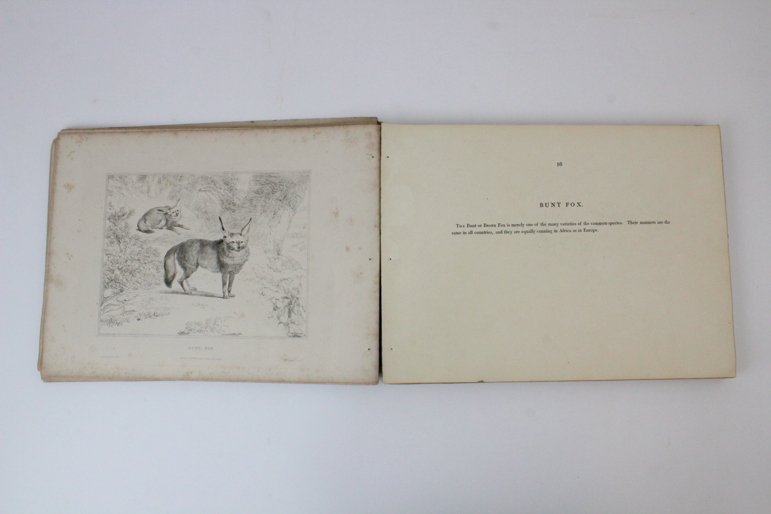 After Thomas Shotter Boys (1803-1874), Eight views of French cities, comprising: 'The Porch Of - Image 23 of 30