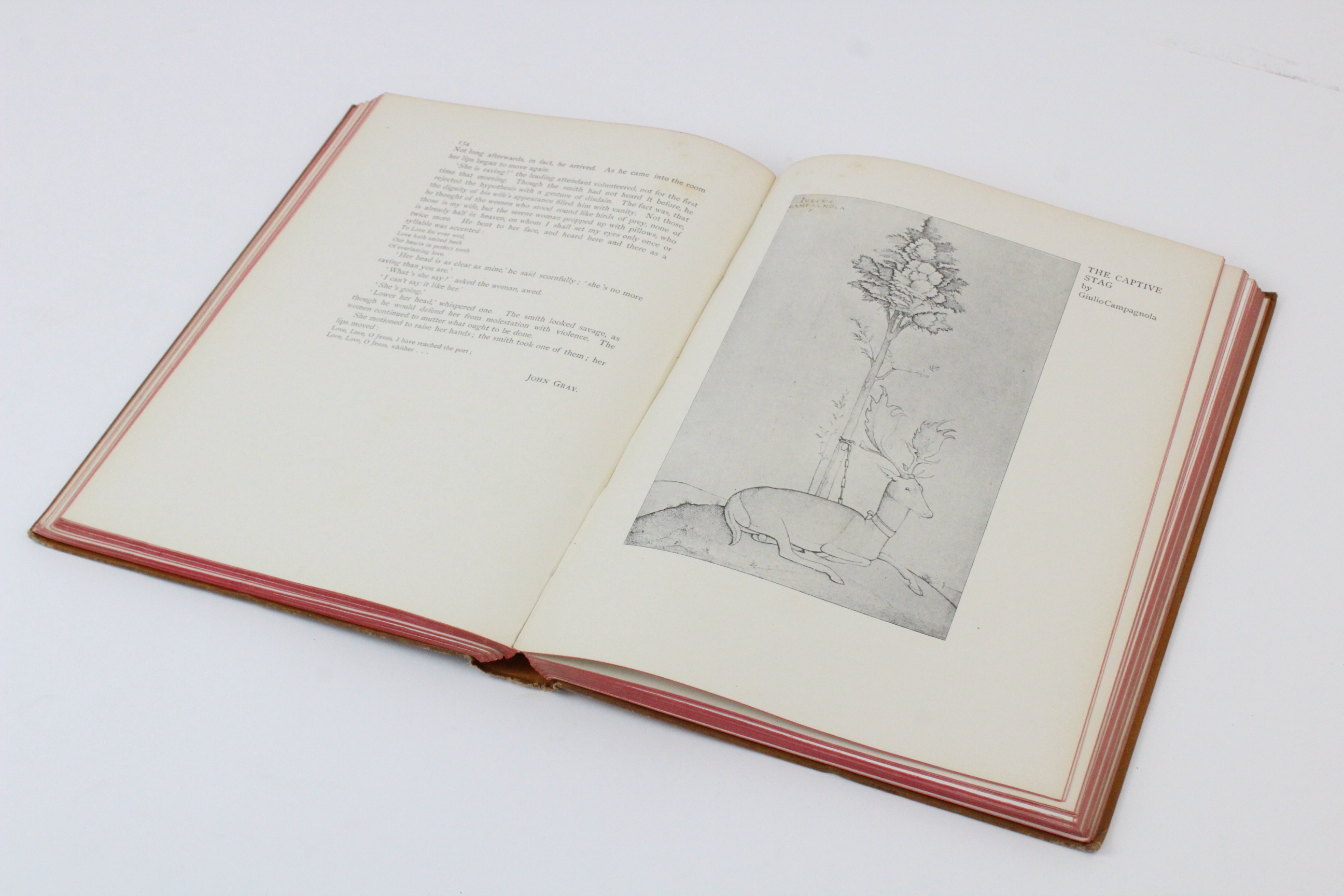 Hazelwood (C) et al, THE PAGEANT, 1897 edition, illustrated red boards, illustrated endpapers, - Image 6 of 16