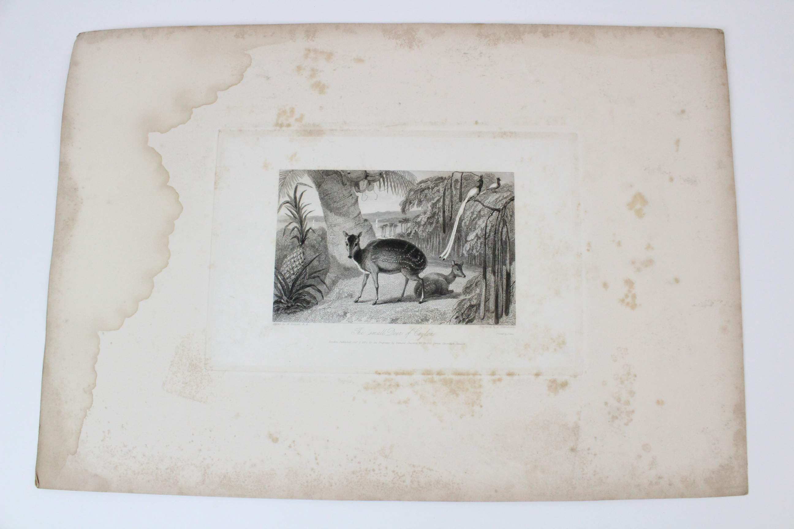 After Thomas Shotter Boys (1803-1874), Eight views of French cities, comprising: 'The Porch Of - Image 29 of 30