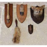 Taxidermy; an early 20th century fox mask upon an oak shield shaped plinth, 28cm high, a deer foot