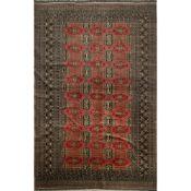 TAPPETO KASHMIR BOKARA trama ed ordito in cotone, vello in lana. Pakistan XX secolo - cm 251 x 170