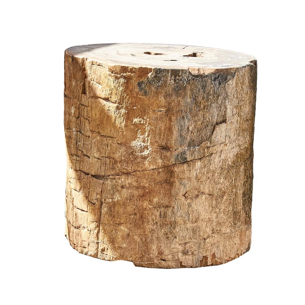 TRONCO fossile adibito a base da tavolo