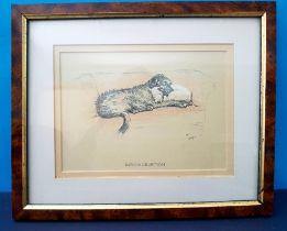 Set of 3 Vintage Cecil Aldin Dog Prints