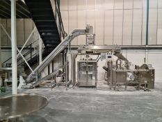 VERTICAL FORM FILL AND SEAL AND POUCH PACKING LINE