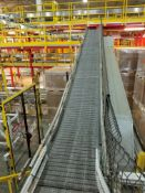 Europool Stainless Steel Case Conveyor - (3) Inclines and Curves