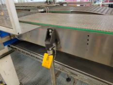 Approx. 35 feet of Europool Case Conveyor - Discharge of Case Switch