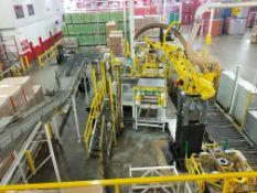 BEMA/Fanuc Robotic Case Depalletizer System