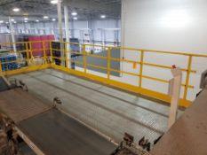 Large Case Conveyor Mezzanine