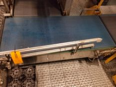 Discharge Conveyor from Mini-Load System to Combiner