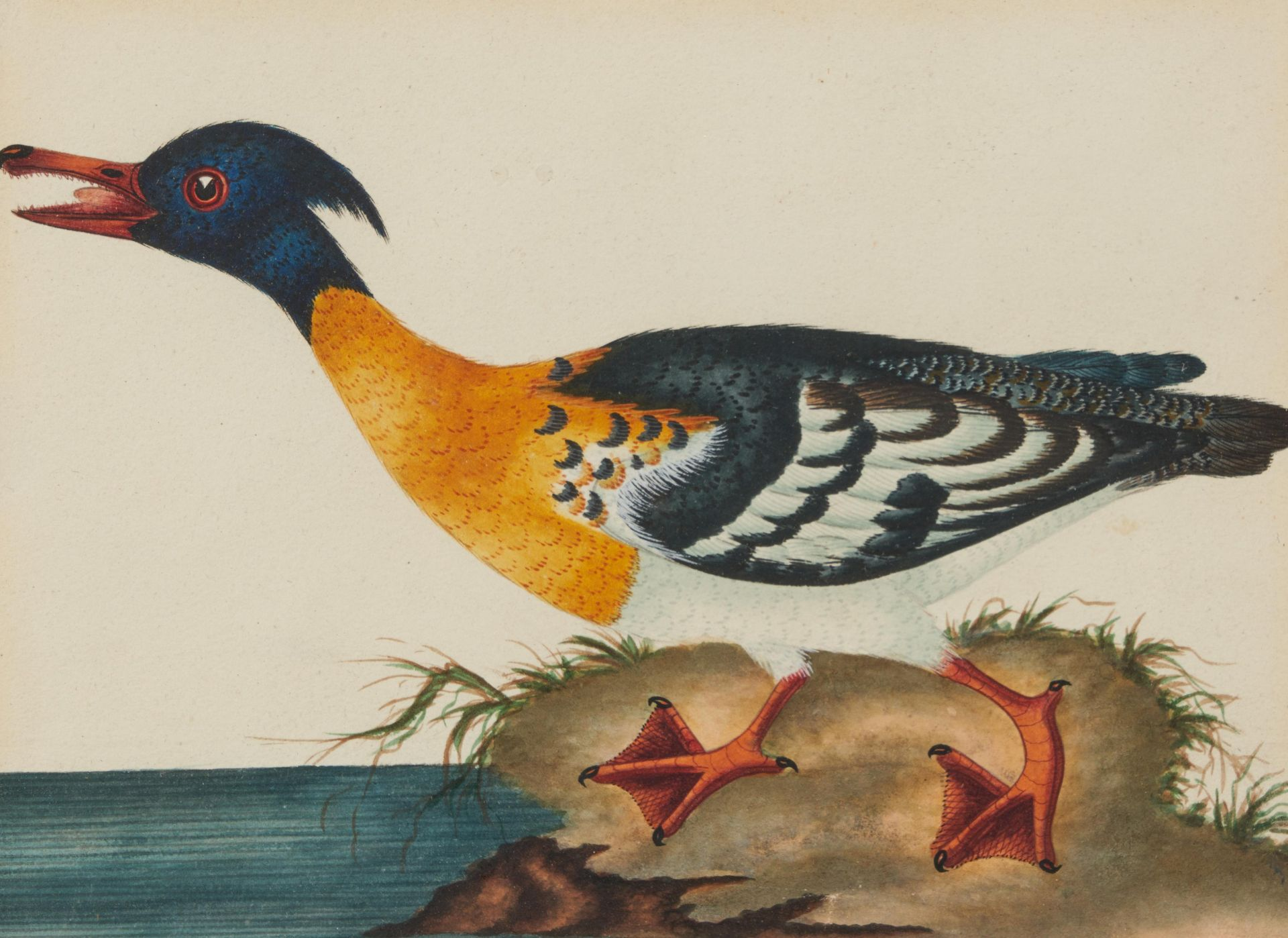Englischer Meister. um 1900. Drei Aquarelle: Gänse und Enten. Jeweils: Aquarell auf Papier. - Bild 8 aus 11