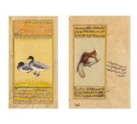 TWO MANUSCRIPT ILLUSTRATIONS OF DUCKS AND SQUIRREL. Indo Persian. 19th-20th c. Pigments on paper.
