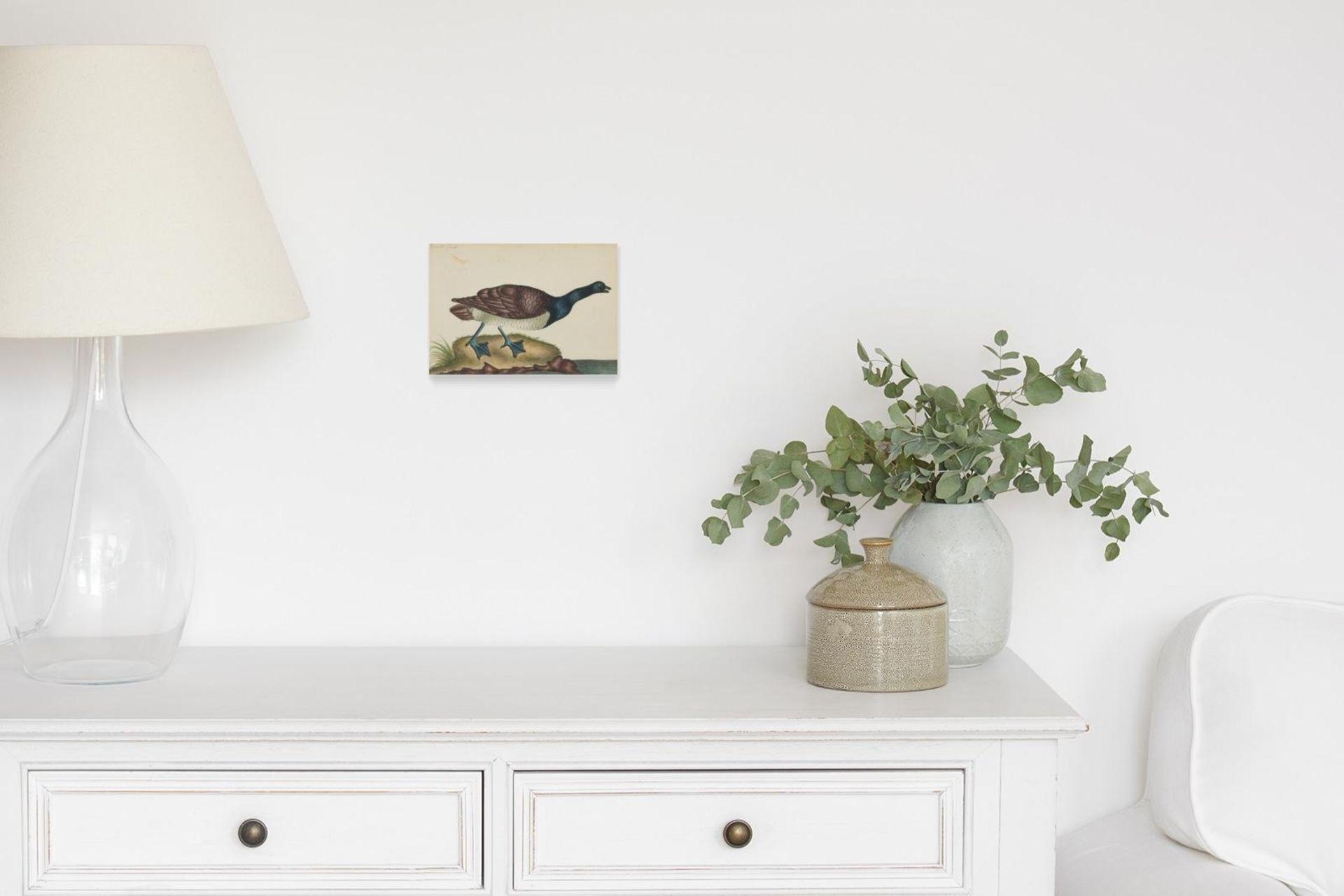 Englischer Meister. um 1900. Drei Aquarelle: Gänse und Enten. Jeweils: Aquarell auf Papier. - Bild 11 aus 11