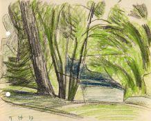 Bäume in Weimar