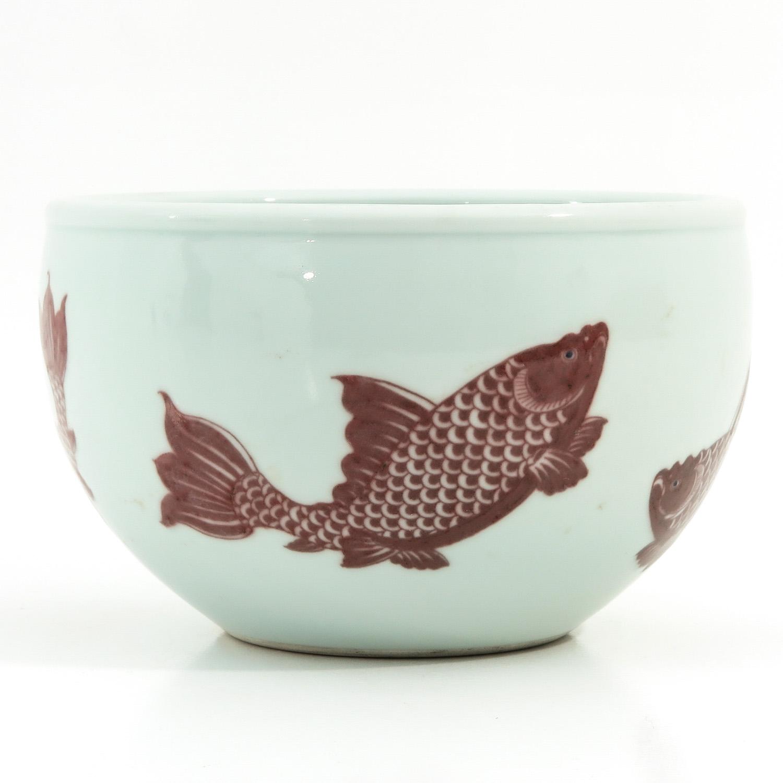 A Fish Decor Cache Pot
